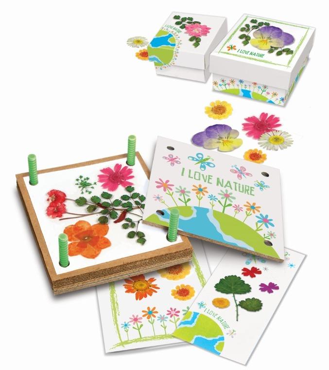 4M, recykling, suszone kwiaty, zestaw kreatywny