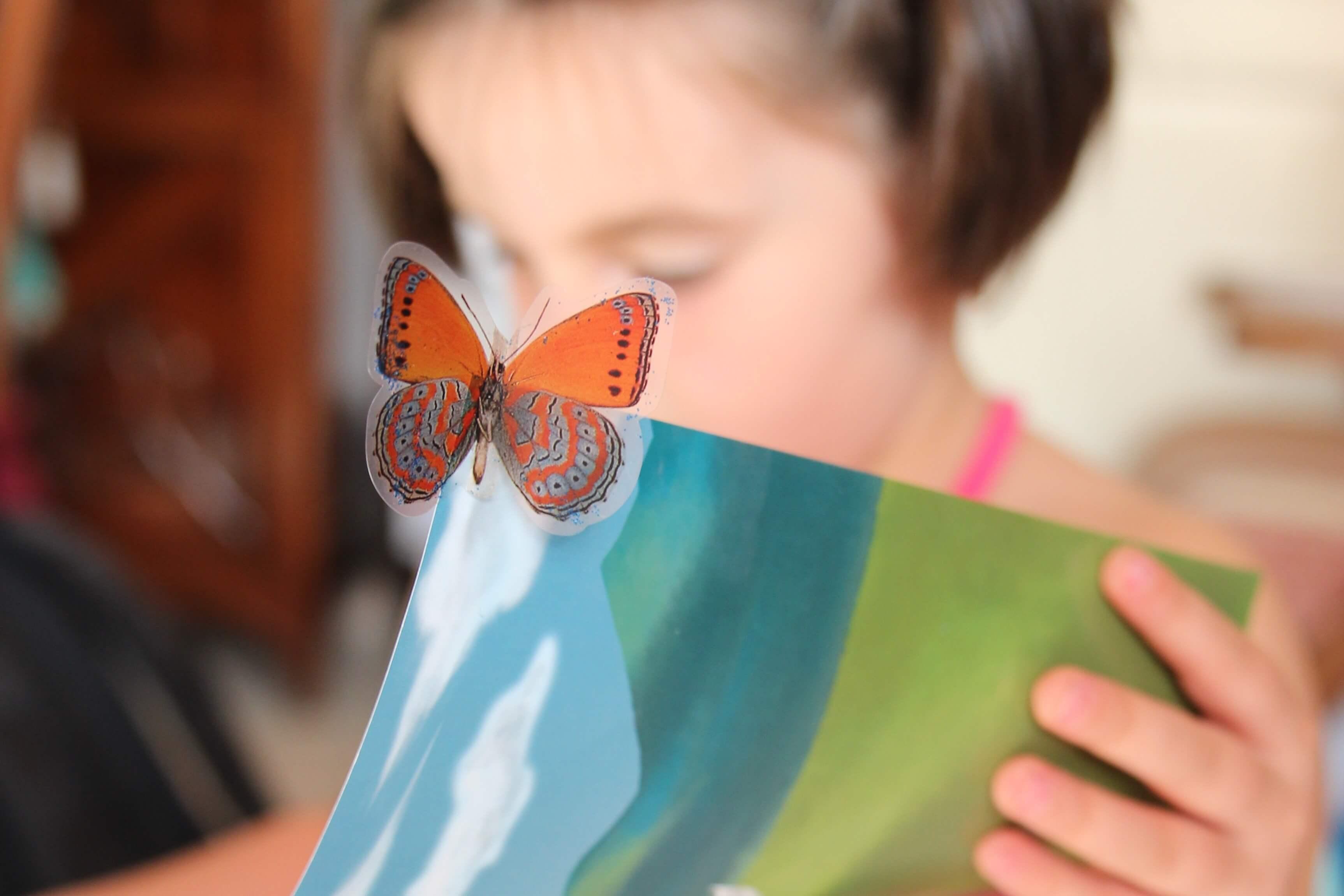 ksiazki przyrodnicze dla dzieci