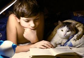 Najlepsze książki o kotach dla dzeci