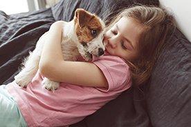 Pies, kot, a może… patyczaki? Jakie zwierzątko dla dziecka wybrać?